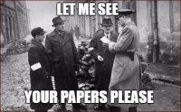 Papers Please Meme.jpg