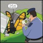 blog_image_4724_11826_Wyatt_Cartoon_Butterfly_201811011506.jpg
