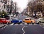 abby road beetles.jpg