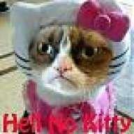 KittyKitten