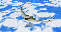 aircraft clouds 6.png