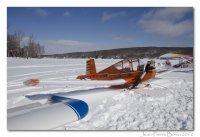 low wing sky pup on skis.jpg