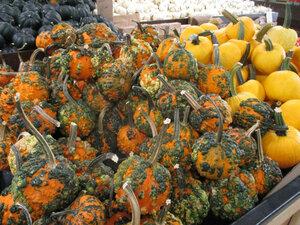 pumpkins 4a.JPG