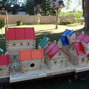 Extreme Birdhouses
