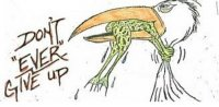 stork and frog.jpg