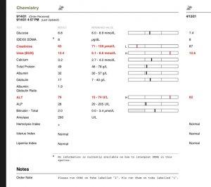 B3881DDD-784A-49ED-B9FE-02BF4CAF7A01.jpeg