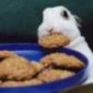 cookiebun