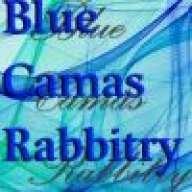 BlueCamasRabbitry