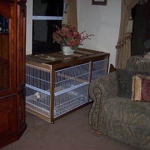 current cage