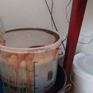 Beerworks_fermenting_day2_Oct2020.jpg